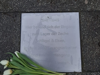 Agnes-Miegel-Str. 2-4, Patin: Meike Landwehr